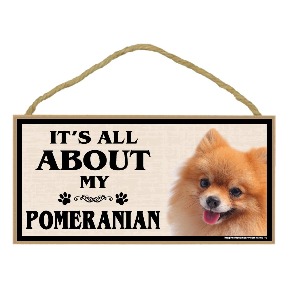Imagine This Wood Breed Sign It's All About My Pomeranian