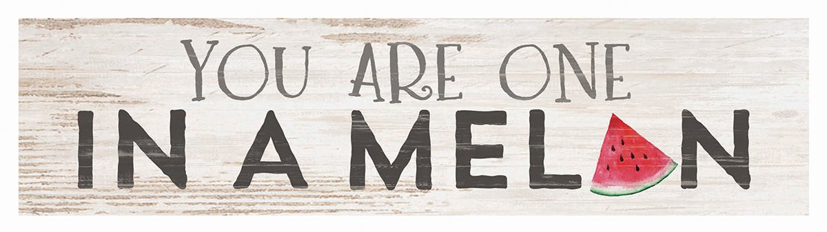 P. Graham Dunn You are One in a Melon Whitewash 6 x 1.5 Inch Pine Wood Mini Tabletop Sign P Graham Dunn