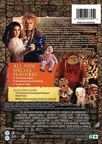 Labyrinth [USA] [DVD]: Amazon.es: David Bowie, Jennifer ...