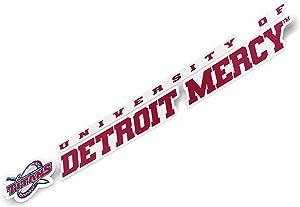 University of Detroit Mercy UDM Titans NCAA Name Logo Vinyl Decal Laptop Water Bottle Car Scrapbook (8 Inch Sticker)