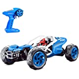 Theefun 1:10 Simulation Racer 2.4G Remote Control Off Road Monster Truck Blue and White