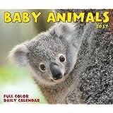 2018 Ba- by Animals Daily Desktop Box Calendar {jg} Great Holiday Gift Ideas - for mom, dad, sister, brother, grandparents, gay, lgbtq, grandchildren, grandma.