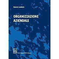 Organizzazione aziendale. Ediz. illustrata