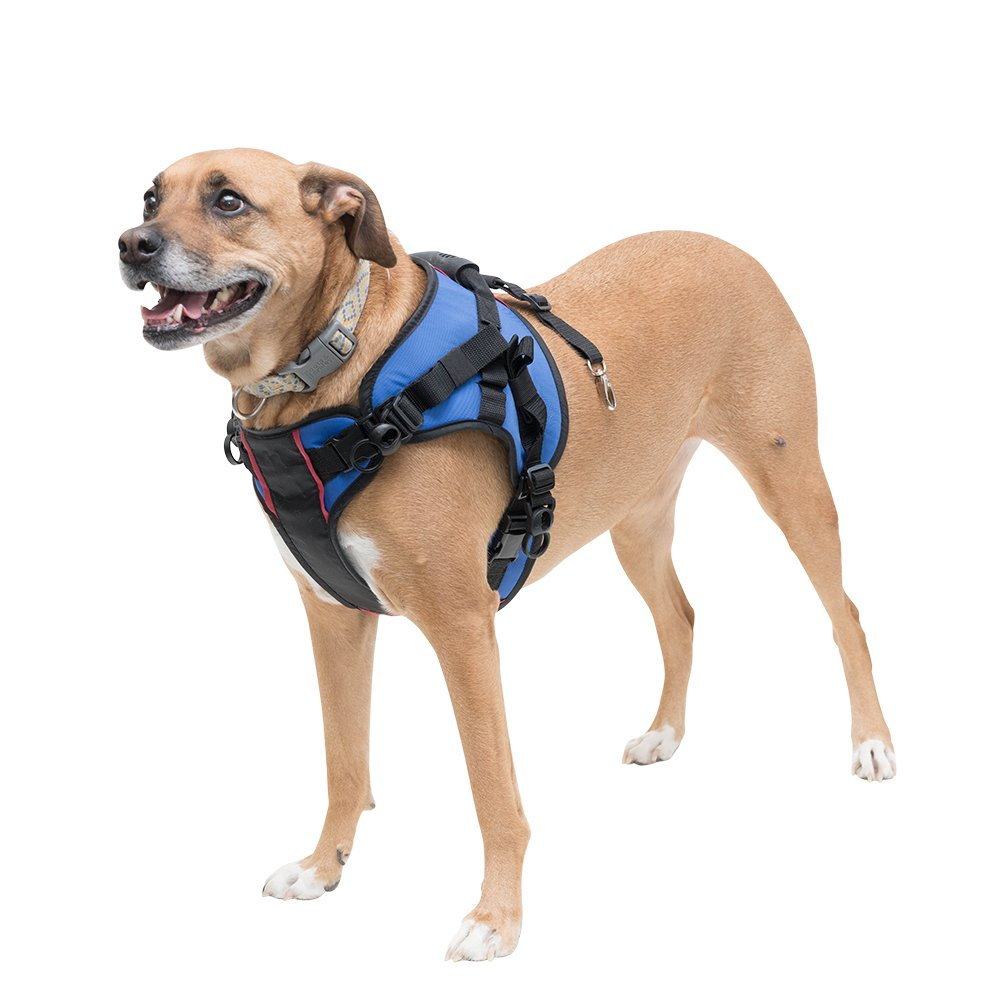 Walkin' Lift Combo Front Mobility Harness