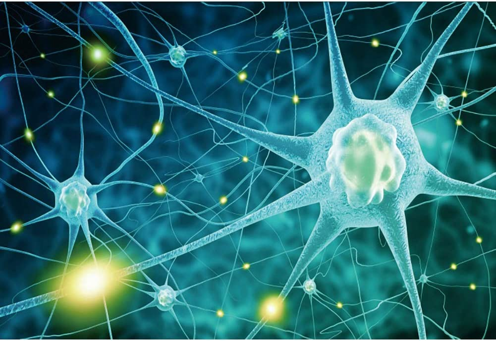 YEELE Nerve Cell Backdrop 10x8ft Human Brain Neuron System Photography Background Medical Science Research Biology Class Hospital Lab Decor Kids Adults Artistic Portrait Photo Shoot Props Wallpaper