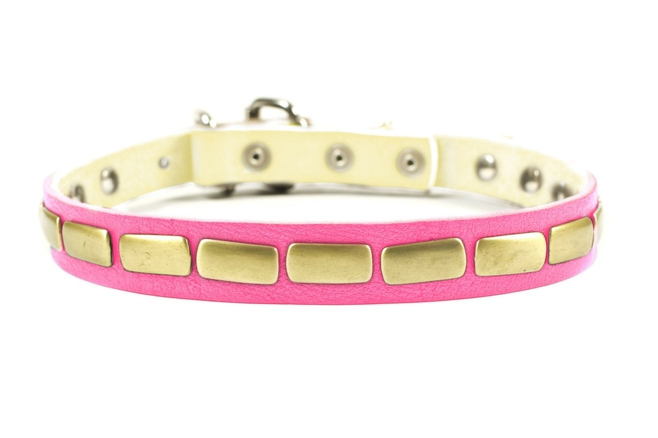 Dean & Tyler Plated Beauty  Dog Collar with Attractive Antiqued Plates, 36-Inch by 1-Inch Leather, Fits Neck 34-Inch to 38-Inch, Pink