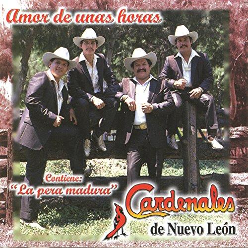 Fiesta Norteña Puras Cumbias by Cardenales De Nuevo León and Tigrillos on Amazon Music - Amazon.com