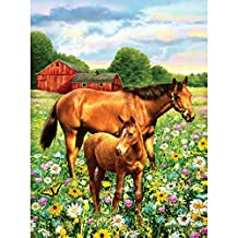 "Royal Brush 8.75"" X 11.75"" Junior Paint by Number Kit, Small, Horse in Field"