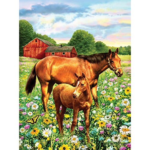 Royal Brush 8.75 by 11.75-Inch Junior Paint by Number Kit, Small, Horse in Field