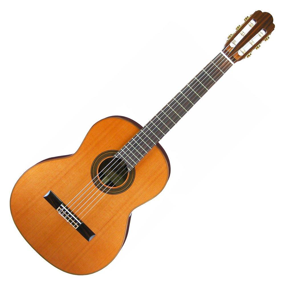 ARIA アリア クラシックギター 630mmスケール レディースサイズ 表板セダー 単板 ソフトケース付 A-50C-63   B004UU2RFM
