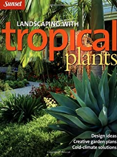 Landscaping With Tropical Plants Design Ideas Creative Garden Plans Cold Climate Solutions