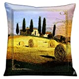 Lama Kasso Como Gardens Tuscan Country Side Micro-Suede 18-Inch Square Pillow, Design on Both Sides