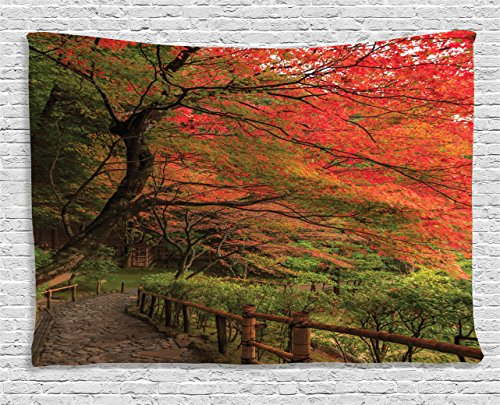 ecor Collection, Lace Canadian Maple Tree with Faded Autumn Leaves Tranquil Rainy Zen Path Session Photo, Bedroom Living Room Dorm Wall Hanging Tapestry, 60 X 40 Inches, Red Green ()