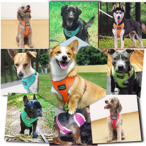 ThinkPet Reflective Breathable Soft Air Mesh No Pull Puppy Dog Vest Harness Neon Green Neck 15-25 in/Chest 25-40 in