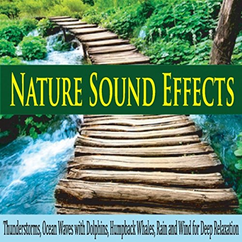 Nature Sound Effects: Thunderstorms, Ocean Waves With Dolphins, Humpback Whales, Rain and Wind for Deep Relaxation