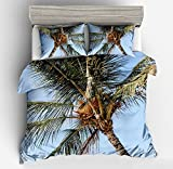Wonderful Blue Sky Palm Tree Cotton Microfiber 3pc 104''x90'' Bedding Quilt Duvet Cover Sets 2 Pillow Cases King Size