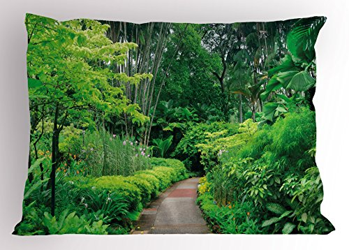 Lunarable Forest Pillow Sham, Green Plants Trees in Singapore Asia Botanic Gardens Walkway Travel Destination Arboretum, Decorative Standard Queen Size Printed Pillowcase, 30 X 20 Inches, Green (Walkway Standard)