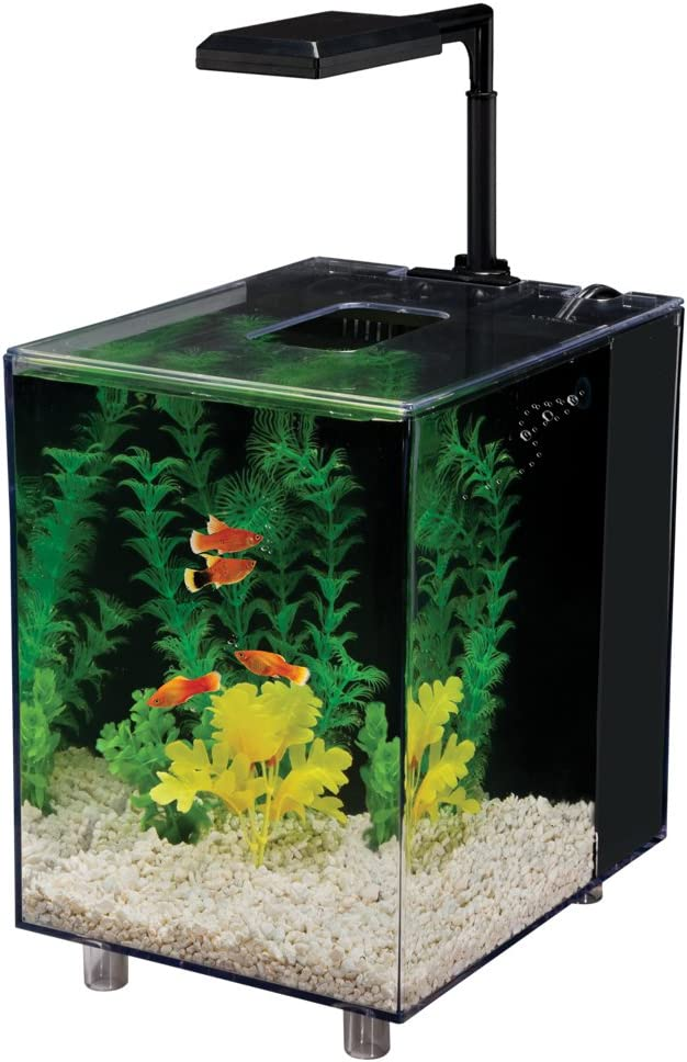 Penn-Plax Prism Nano Aquarium Kit in Black