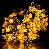 Patio Lawn Garden Best Deals - niceEshop(TM) Cherry Flower Solar String Lights, 23ft 50 LED Waterproof Outdoor Blossom Lighting Decoration for Indoor/Outdoor, Patio, Lawn, Garden, Christmas, and Holiday Festivals (Warm White)