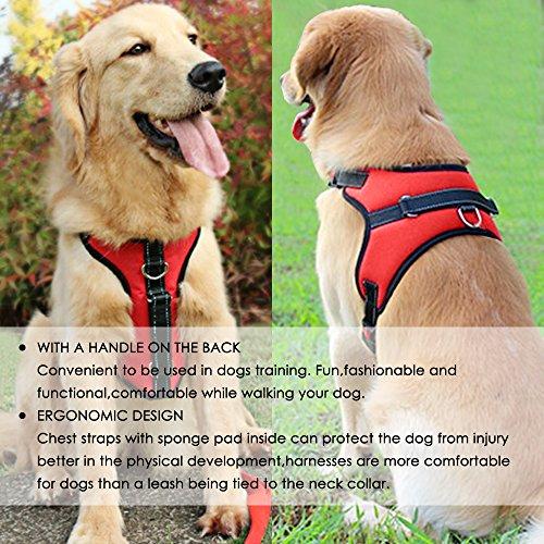 Arnés para el pecho del perro Tamaño mediano, MAXIN Ajustable Sin arnés del pecho del perro de la correa del pecho con la manija en la tapa - el mejor para ...