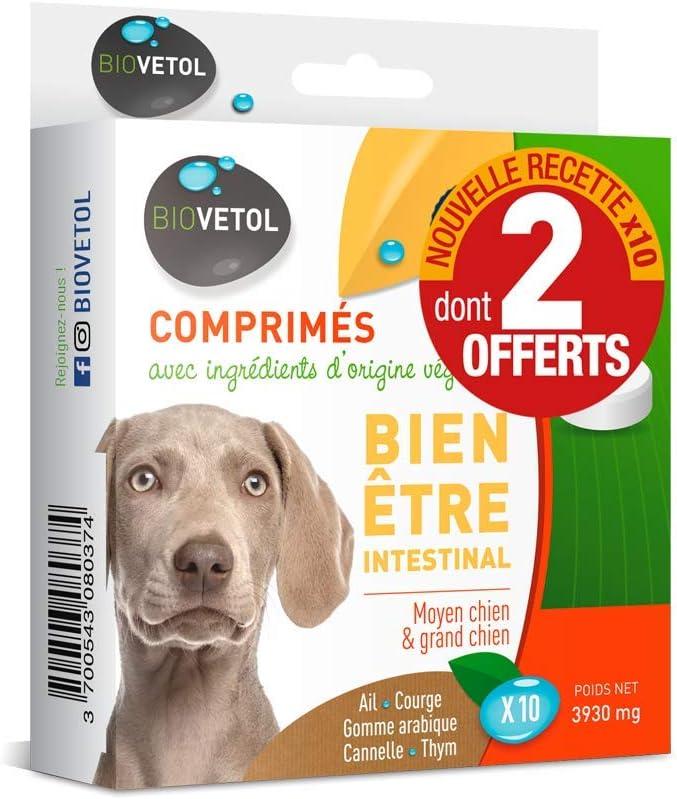 Biovetol - Comprimidos de bienestar intestinal para perros medianos/grandes; 10 unidades de los cuales 2 están incluidos.