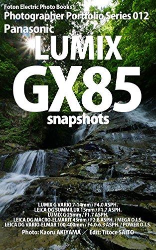 Foton Electric Photo Books Photographer Portfolio Series 012 Panasonic LUMIX GX85 snapshots ()