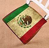 Custom Mexican Flag Grunge Vintage Style Home Decor Seat Cushion Chair Cushion Floor Cushion Twin Sides 20x20 inches