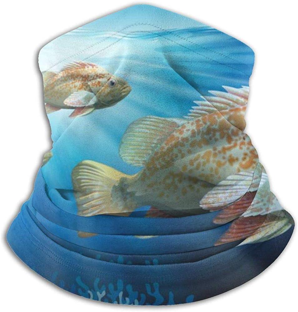 Randy-Shop Mero Nadando en el océano Calentador de Cuello - Tubo ...