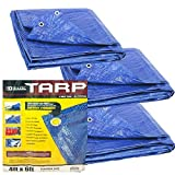 Bazic 4'x6' Tarp - Multipurpose Cover or Great Tent For Gardening Camping Traveling Weather-Resistant Small Size Tarpaulin (3 Pack)
