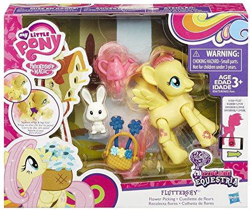 My Little Ponny - Equestria con accesorios (Hasbro B3602EU40), Variedad de modelos: Amazon.es: Juguetes y juegos