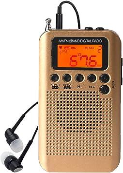 Mini Am FM Radio Digital portátil con Reloj Despertador y Temporizador de Apagado automático, Altavoz o Auriculares para Interiores o a pie(Oro): Amazon.es: Electrónica