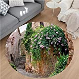 Nalahome Modern Flannel Microfiber Non-Slip Machine Washable Round Area Rug-Summer Garden Flowers Marigold Stones Antique Ancient House in Spain Art Print Multicolor area rugs Home Decor-Round 67''