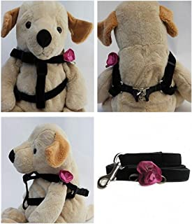 "product image for Diva-Dog 'Orchid Carnation' Custom 5/8"" Wide Velvet Dog Step-in Harness with Plain or Engraved Buckle, Matching Leash Available - Teacup, XS/S"