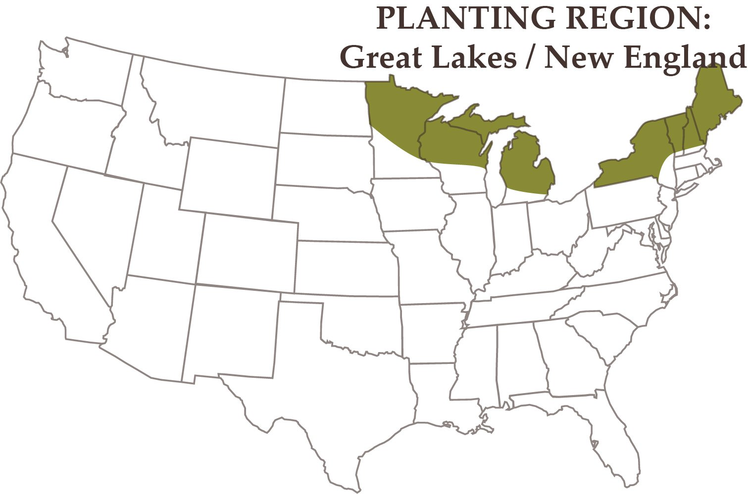 Nature's Seed 1.5 Acre Great Lakes/New England Horse Pasture Blend by Nature's Seed (Image #3)