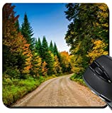 MSD Suqare Mousepad 8x8 Inch Mouse Pads/Mat design 33890537 Autumn color along a dirt road in White Mountain National Forest New Hampshire