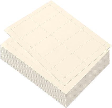 Best Paper Greetings Papel en blanco para tarjetas de visita, 1000 ...
