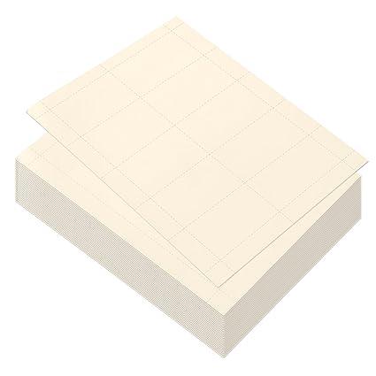 Best Paper Greetings Blankopapier Für Visitenkarten 1000 Karten Für Inkjet Und Laserdrucker 100 Blatt 3 5 X 1 9 Zoll Elfenbein