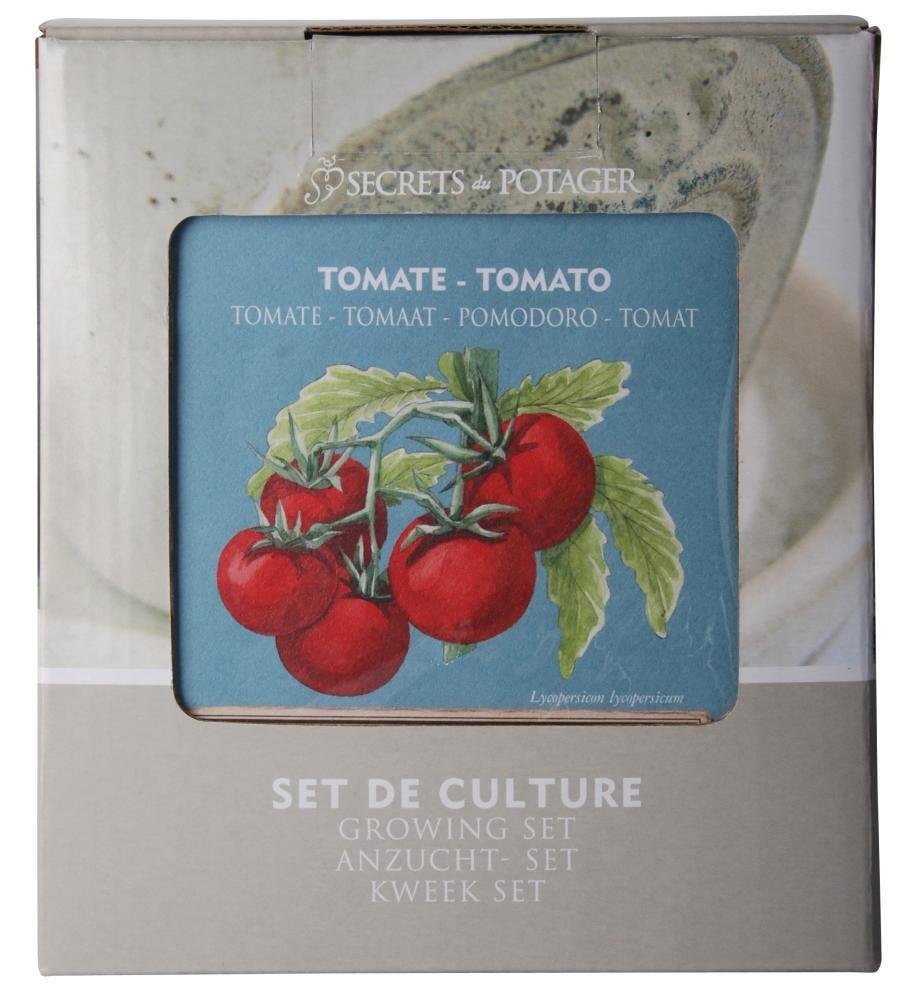 3 Stück Esschert Design Anzucht-Set Tomate, bestehend aus: Saatgut und Blumenerde inkl. Raku-Blumentopf, Untersetzer und Pflanzschild