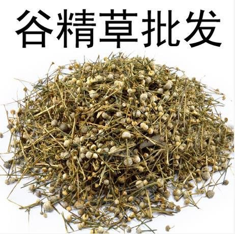 500g-pipewort-chinese-herbal-medicine-wholesale-pearl-grass-grass-valley-sperm-meteor