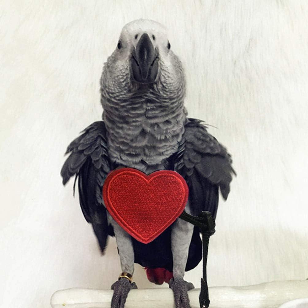 Talla s Correa de Loro Correa de p/ájaro Ajustable Loro Mascotas Cuerda de Entrenamiento de Vuelo al Aire Libre para peque/ñas Aves Medianas POPETPOP arn/és para p/ájaros