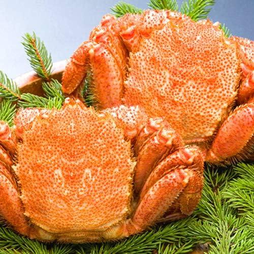 海鮮蟹工房 北海道 オホーツク海産 ボイル冷凍 毛がに 500g前後 2尾