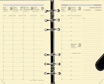 Quo Vadis - Recambio para agenda Timer 17 Prestige 16 meses ...