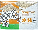Spagmoss Premium New Zealand Sphagnum Moss Great for Reptiles, Bedding and Terrarium (1 Kilogram)