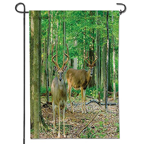 Philiphome Seasonal Garden Flag abitat Woodland Decor Collection Whitetail Antlers in Tropical Trees Forest Double Sided Weatherproof Flags-12