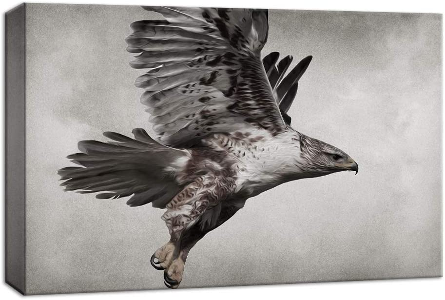 NWT Canvas Wall Art Wildlife Hawk in The Sky Painting Artwork for Home Decor Framed - 12x18 inches
