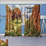 Room Darkening Grommet Window Curtains, Utah Plateau Mojave Desert Southwest Erosion Navajo Artprint Brown Green, Set of Two Panels, 96W x 108L inch