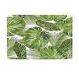 KOTOM Tropical Hawaiian Exotic Plants Decor, Frog on Monstera and Palm leaves Bath Rugs, Non-Slip Doormat Floor Entryways Indoor Front Door Mat, Kids Bath Mat, 15.7x23.6in, Bathroom Accessories
