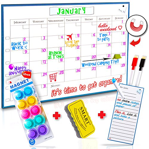 Monday to Sunday Dry Erase Calendar by Curiosity