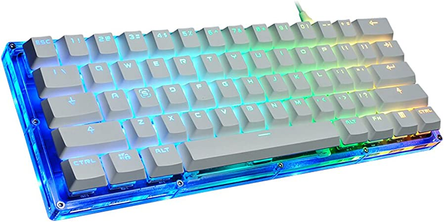 DYW Teclados para gamers USB con Cable de 61 Teclas RGB Juego de Cristal de luz Transparente Fresca Teclado mecánico, Teclado de Juego de Programador ...