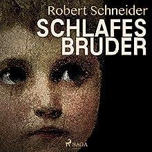 Schlafes Bruder Hörbuch von Robert Schneider Gesprochen von: Fritz Hammel